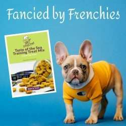 Homemade Dog Treats for Frenchies