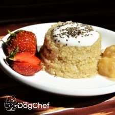 Quinoa Dog Treat Recipe