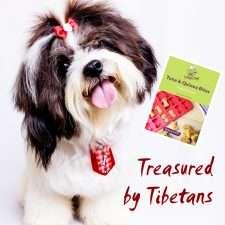 Homemade Dog Treats for Tibetan Terriers