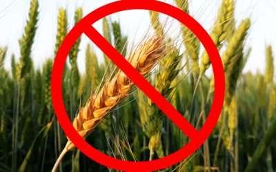Wheat-Free Dog Treats