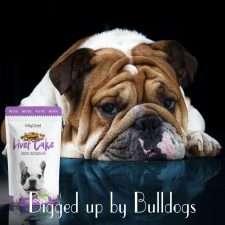 Homemade Dog Treats for Bulldogs